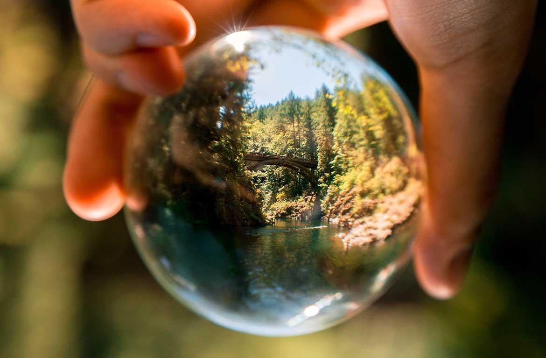 S certifikatom za Environmental auditora zaposlite se u najvećim svjetskim tvrtkama čije djelovanje izravno utječe na okoliš